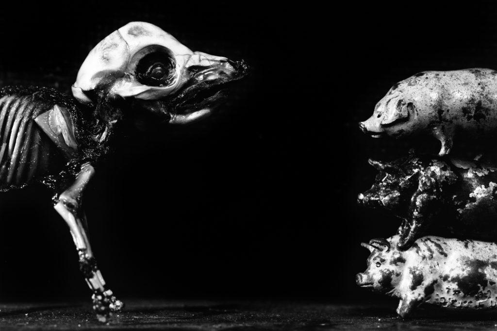 銀鹽影像作品